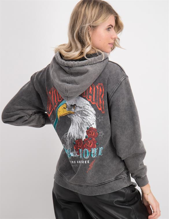 Colourful Rebel Eagle Oversized Hoodie 9249