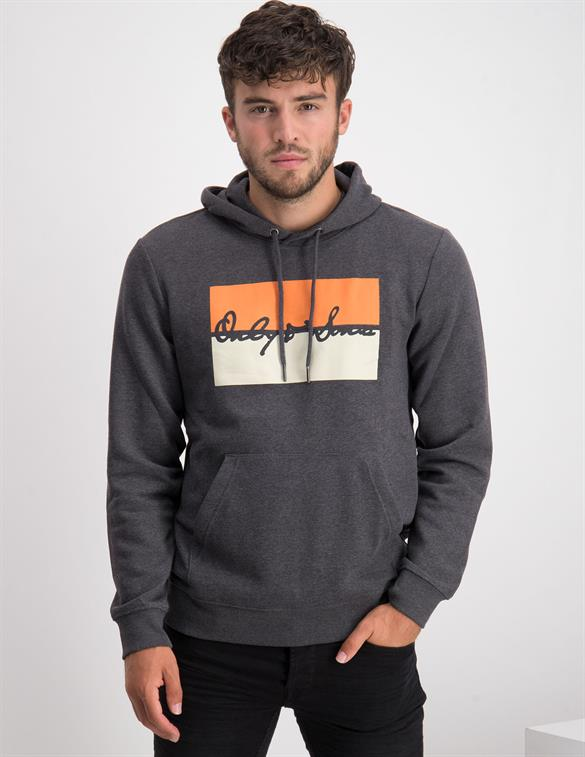 ONLY & SONS ONSMAVA LIFE REG HOODIE SWEAT 22017497